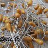 خازن تانتال 10 میکرو فاراد 16 ولت AVX آمریکا